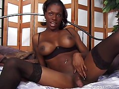Chocolate shemale shows off her hard stick