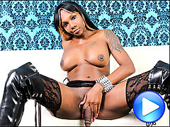 Big breasted Black tgirl strips out of her see through lingerie