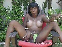 Ebony Tgirl Honey Strokes Her Stick in the Garden