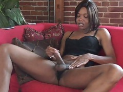 Horny black shemale stroking on red sofa
