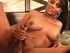 Big black shemale cock gets stroked