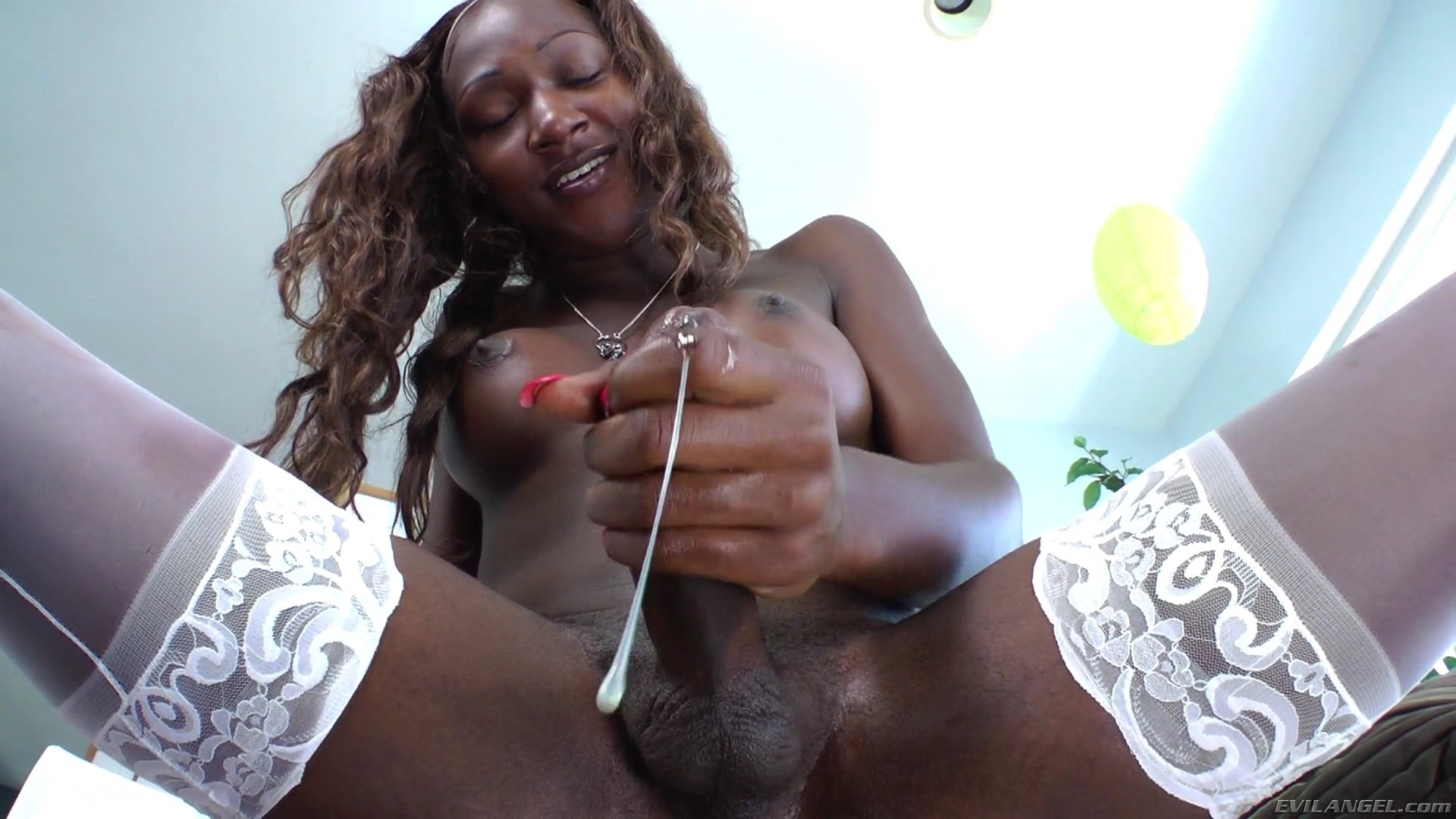 Ebony tranny video — img 13